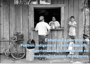 El estudio exploratorio sobre Pueblos Indígenas y el Sector Privado
