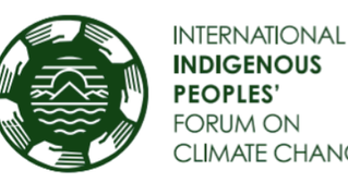 Statement of the International Indigenous Peoples Forum on Climate Change (IIPFCC) to the Ad Hoc Wor