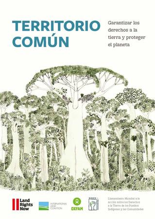 TERRITORIO COMÚN - Garantizar los derechos a la tierra y proteger el planeta