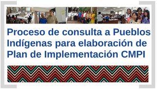 Proceso de consulta a Pueblos Indígenas