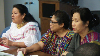Intervención de la representante de pueblos indígenas.