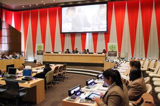 Presentan nuevo informe de la ONU sobre el desarrollo sostenible