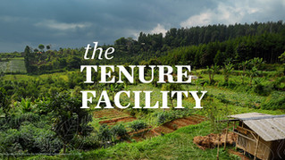 The International Land and Forest Tenure Facility