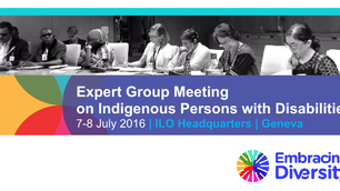 Expert Group Meeting on Indigenous Persons with Disabilities