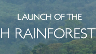 Launch of The Interfaith Rainforest Initiative.