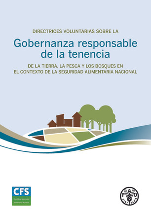 Directrices voluntarias sobre la Gobernanza responsable de la tenencia. FAO.