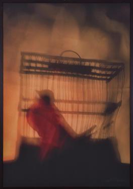 'Kuşatma Serisi', 100x70cm. 2009 Tuval üzerine fotoğraf baskı