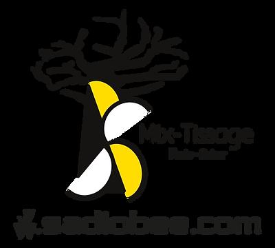 logoSadioBee.png
