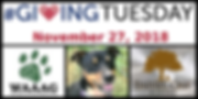 givingtuesday2018.PNG