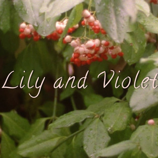 Lily and Violet