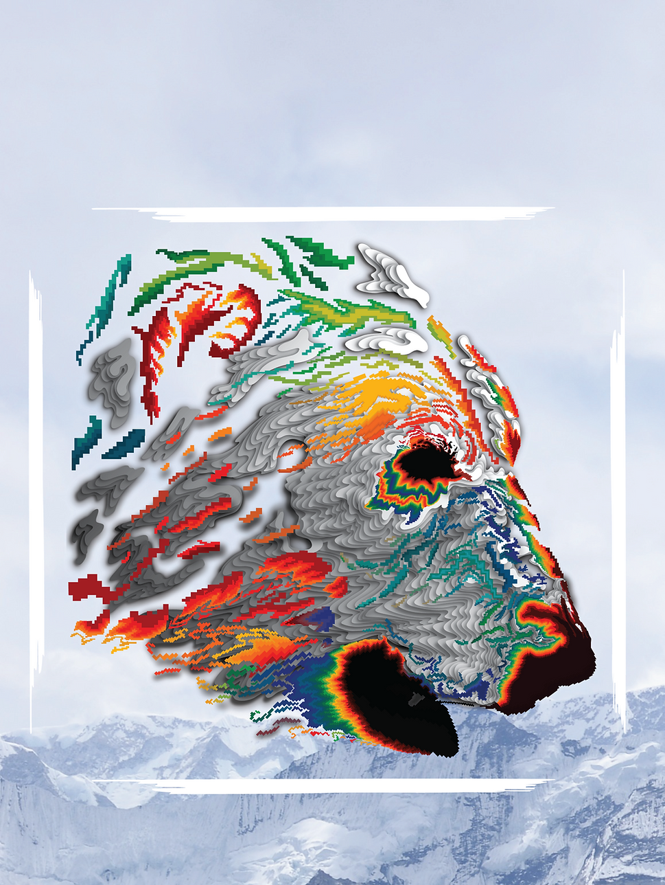 Wix Polar Bear PAGE-01.png