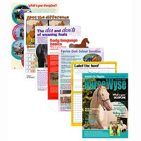 Summer Issue.jpg