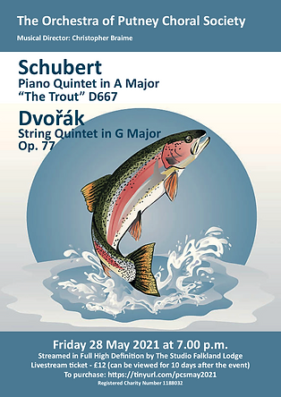 Online concert May 2021 poster trout fin