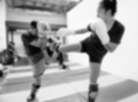 MMA (11 of 34).jpg