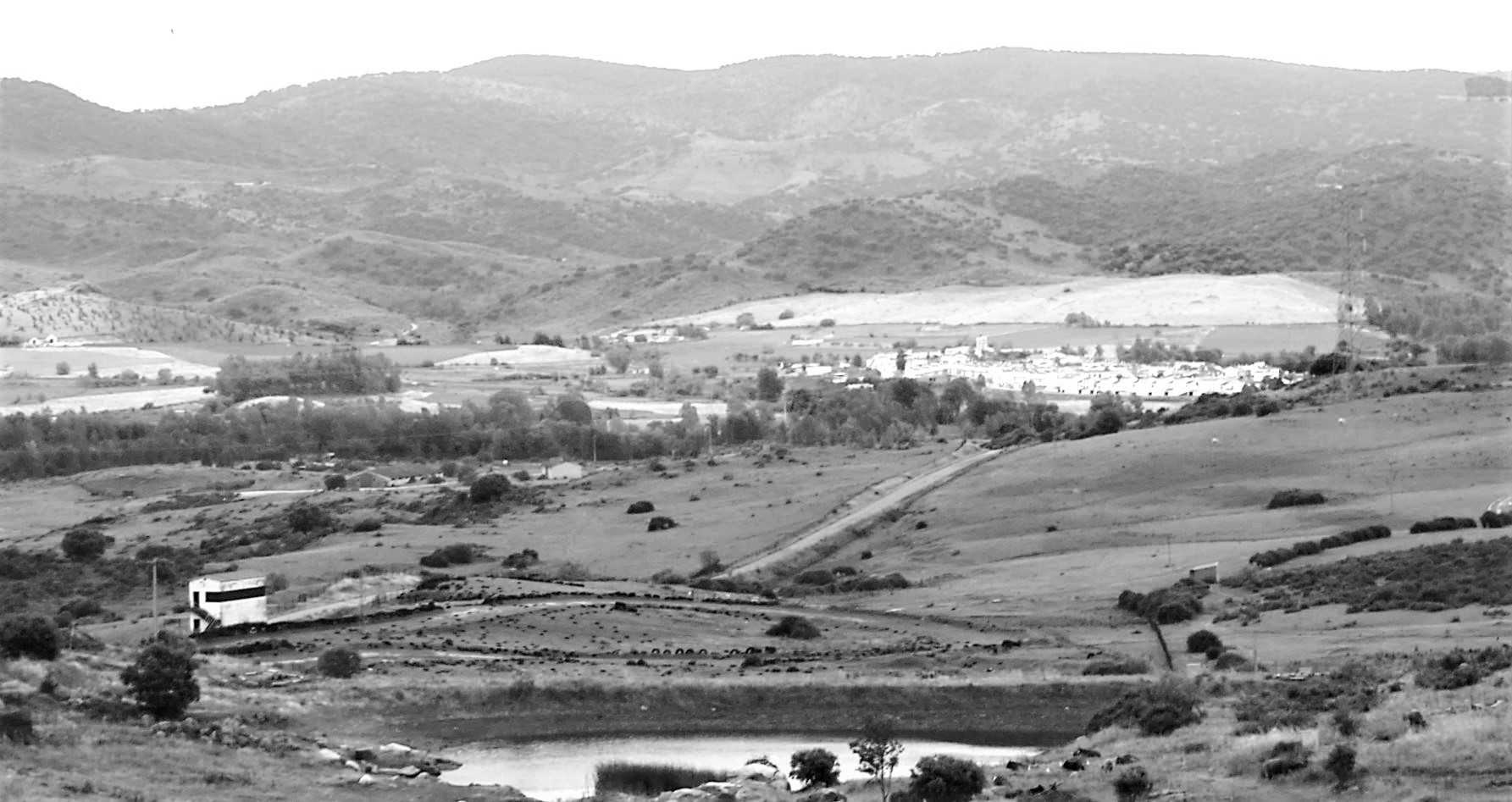 Charcas en el paisaje de la Bazana / Landscape