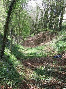 Cutham dyke at Bagendon