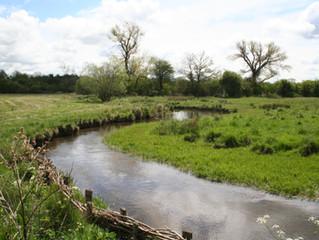Take part in our survey - Bagendon and Salmonsbury (Greystones Farm) / Participez à notre enquête /