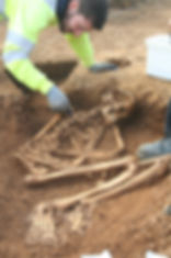 Skeleton excavated at Greystones Farm