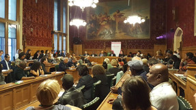 Meeting with Windrush citizens in Parliament