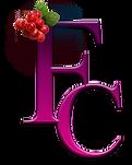 FC-favicon_03.png