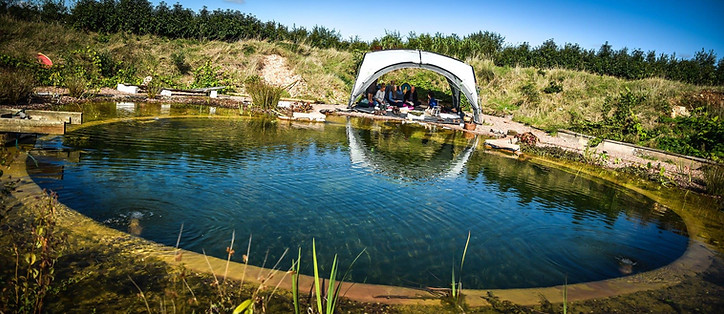 Event Space / Natural swimming pond