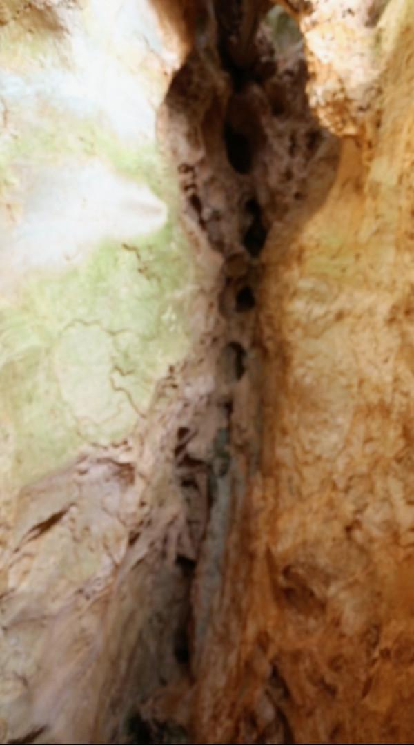 Cueva útero-columna vertebral