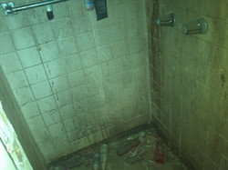 In law shower before