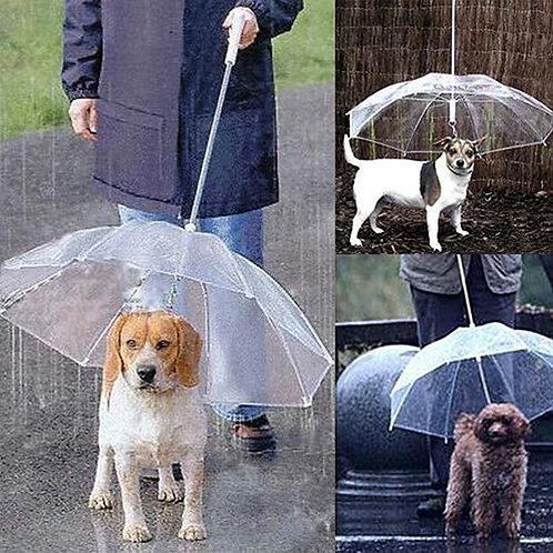 Dog Walking Waterproof Clear Cover Umbrella