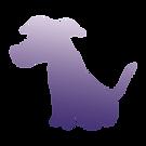 Dog%20C%20GradMatte_edited.png