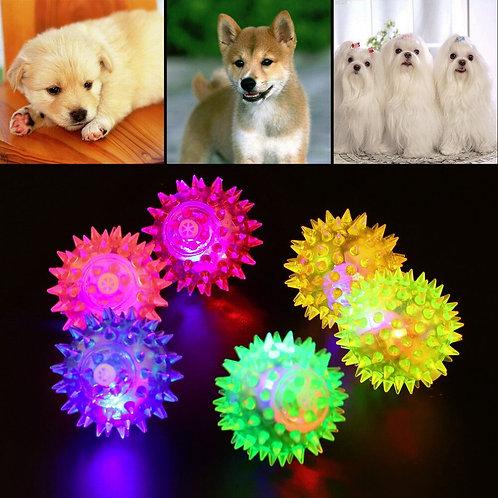Lovely Dog Ball