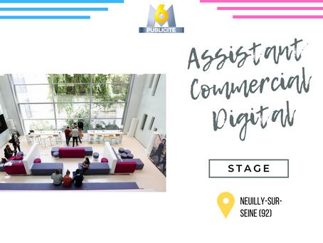 M6 Publicité - Assistant Commercial Digital (Stage)