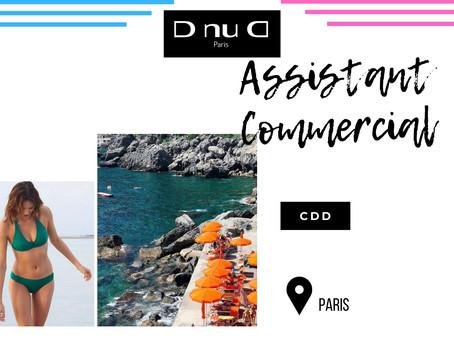 D nu D - Assistant Commercial (CDD)