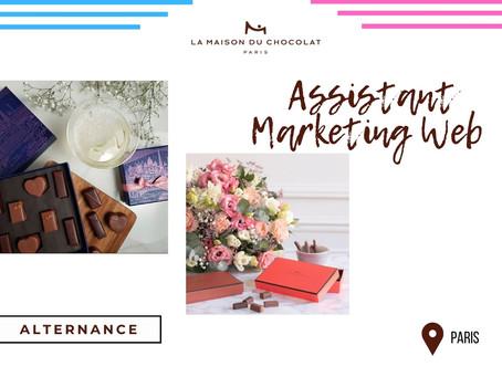Maison du Chocolat - Assistant Marketing Web (Alternance)