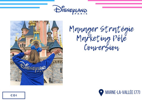 Disneyland - Manager Stratégie Marketing Pôle Conversion (CDI)