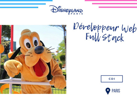 Disneyland - Développeur Web Full Stack (CDI)