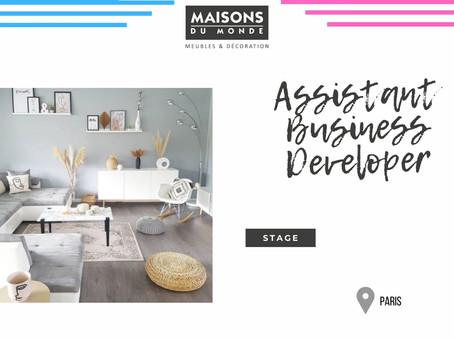 Maison du Monde - Assistant Business Developer (Stage)