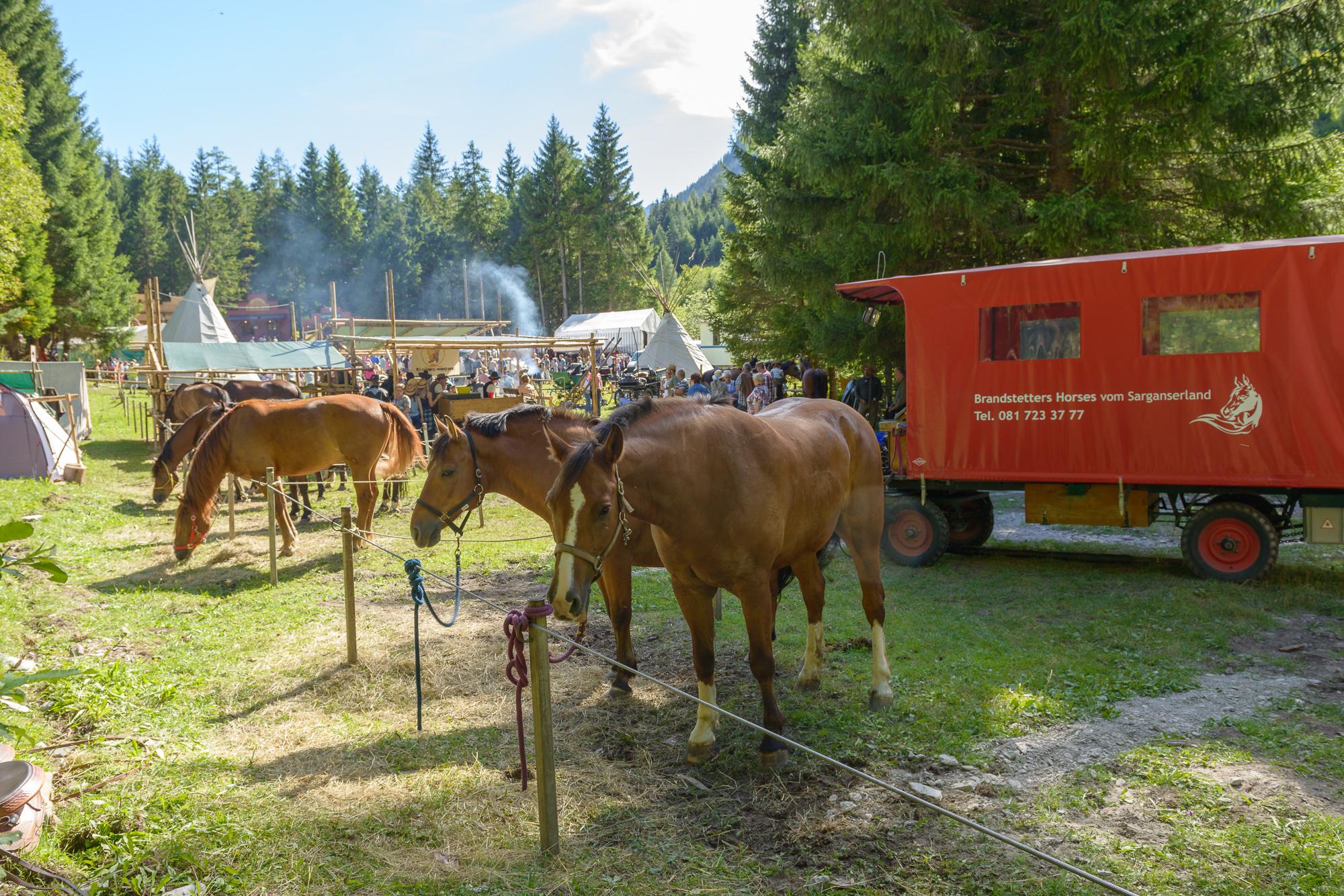 Pferde-Ranch