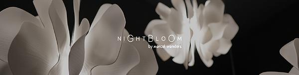 Lladro Nightbloom-01.png