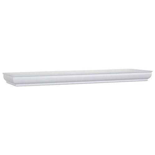 23 in. L x 4 in. W Profile White Ledge