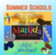 Copy of Copy of Summer Schools.png