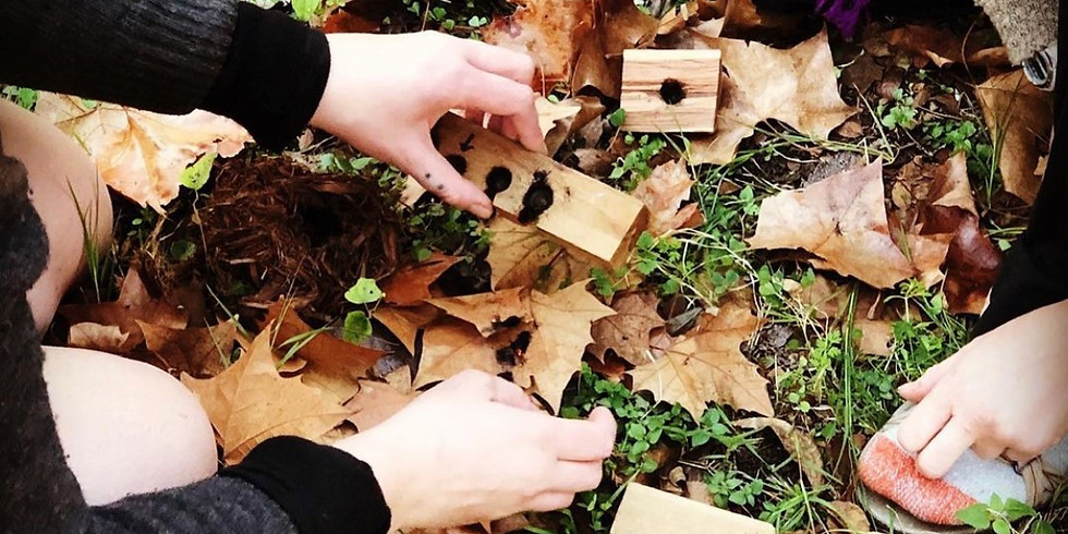 Wilderness Survival in American Sign Language
