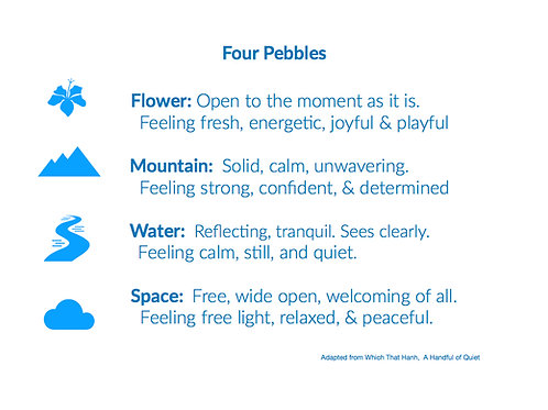 4 Pebbles Coping Skills Poster