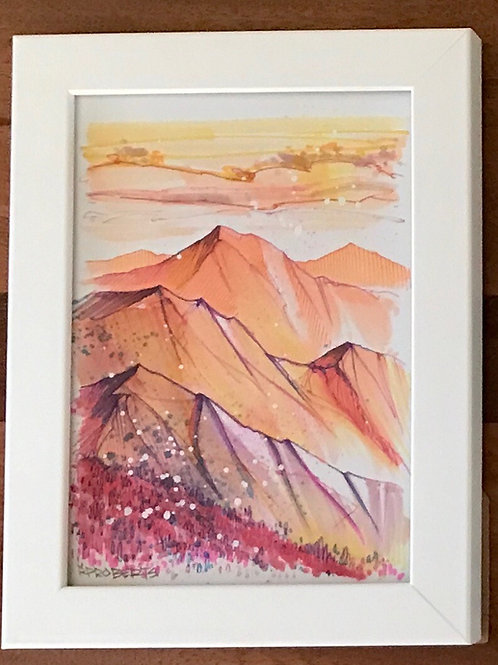 RP Roberts Mountain Study