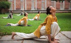 Sadhguru-Mission-Isha-Yoga-7-20121119_CH