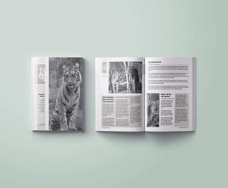 Magazine-USLetter-A4-Mockup-Template.png