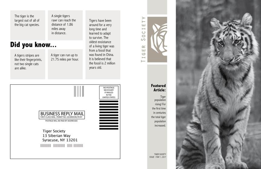 Tiger Society Newsletter-3 Using Old - 2.jpg