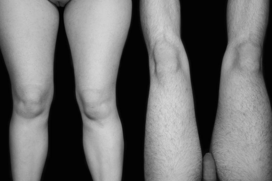 lines-of-legs-flatjpg