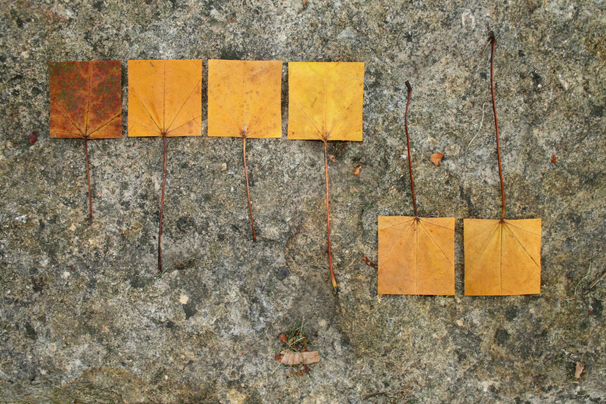 geometric-autumnviijpg