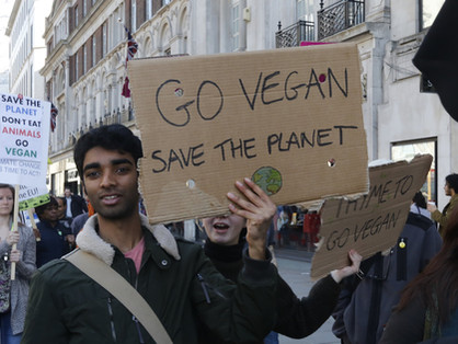 My Path Into Veganism