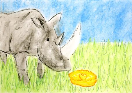 Rhinoceri like apple pie, In preference to plants.